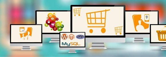 Ecommerce Website Development and design