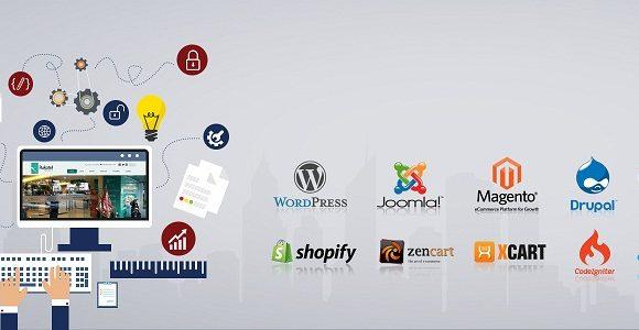 Web Development and design Basics