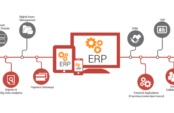 ERP: The Best Importer Software