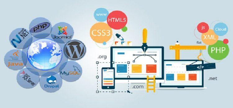 How you can Pick a Web Design Company?